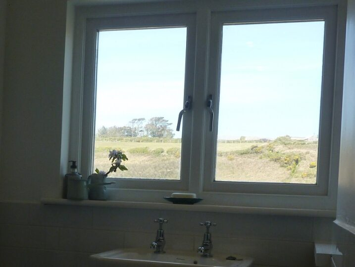 View from Shower Room