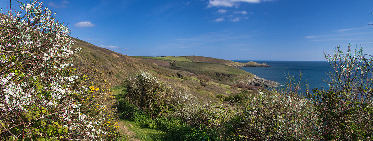 View towards Cudden Point in Cornwall